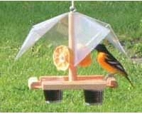 Oriole Feeder Buffet SE560
