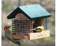 2 Suet and A Seed SE565