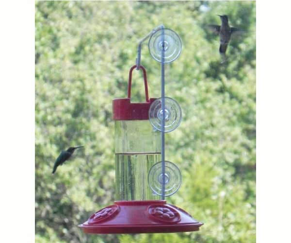 Dr. JB's 16 oz Hummingbird Feeder All Red withSE077 Hanger SE6002W'