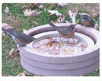 Bird Bath Raft-SE6017