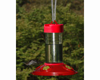 Dr. JB's 16 oz Clean Feeder (All Red Feeder with Yellow Flowers)-SE6018