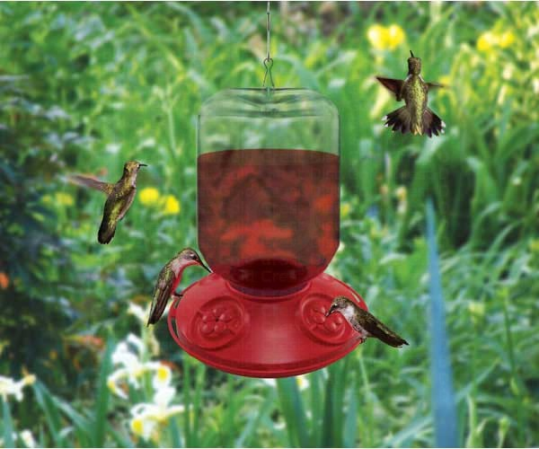 Dr. JB complete Switchable 48 oz Feeder with Red Flowers (Bulk) SE6026'