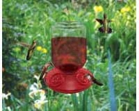 Dr. JB complete Switchable 48 oz Feeder with Red Flowers (Bulk)-SE6026