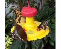 Butterfly Feeder SE78200