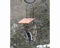 Suet & Seed Ball Feeder Copper Roof-SE909