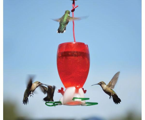 Big Red Hummingbird Feeder SE952