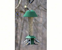 Squirrel Defeater Nyjer Feeder-SE979