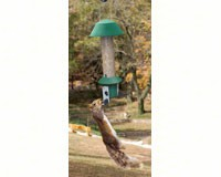 Squirrel Defeater Nut Feeder-SE981