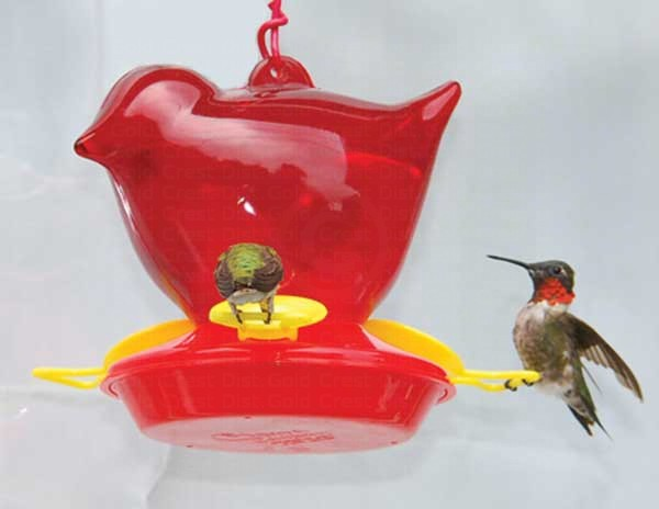 Red Bird Hummingbird Feeder SEBCO312'