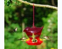 Red Bird Hummingbird Feeder SEBCO312