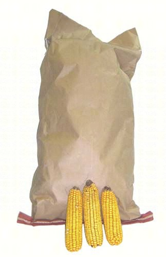 Ear Corn 25 lb Bag Plus Freight SEEC102'