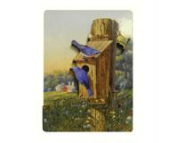 Magnet, Summer Bluebirds SEEK2013