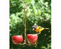 Double Fruit Feeder-SEHHDBAP