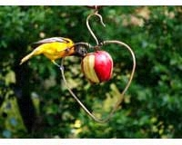 Heart Fruit Feeder SEHHHAPL