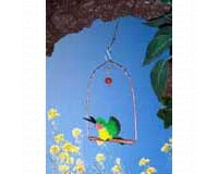 Display Copper hummingbird Swing withhummingbird SEHHHUMSD