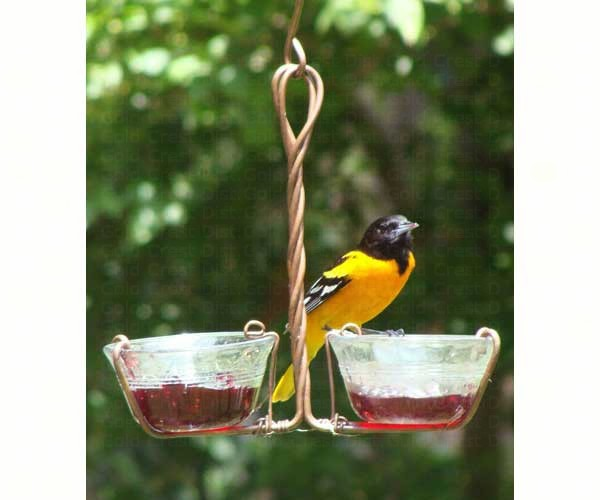Two Cup Jelly Feeder SEHHJELY