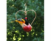 Love Birds Fruit Feeder-SEHHLBAP