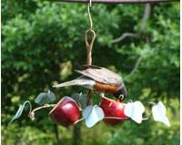 Oriole Fruit Feeder SEHHORFF