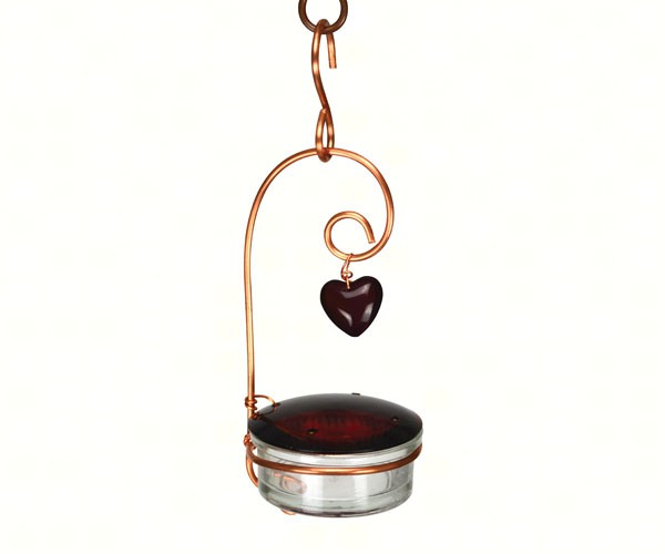 Tweet Heart Hummingbird Feed SEHHTHHF