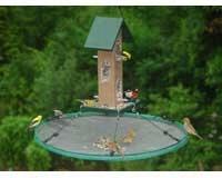 Seed Hoop 30 in Seed Hoop SEIA13921