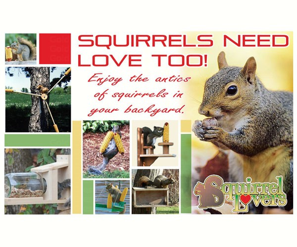 Squirrels Need Love Too SEPOSTSQUIRRELS