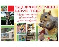 Squirrels Need Love Too-SEPOSTSQUIRRELS