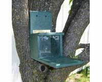 Recycled Plastic Squirrels Only Feeder-SERUB1038