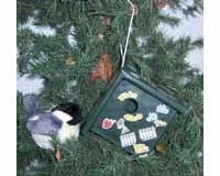 Bird House Kit-SERUBEKKBH