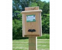 Single Compartment Bat House SESC1019C