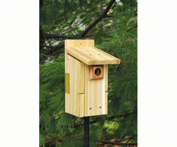 Ultimate BlueBird House SESCS3004RW