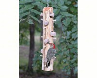 6 Plug Suet Log With Perches-SESCS413