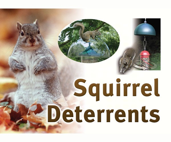Squirrel Resistant Sign SESIGNSQRESIST'
