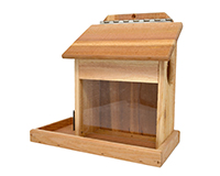 Squirrel Cafe Feeder-SETC119