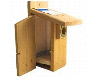 Western Bluebird Ultimate BlueBird House SEWBBSCS3004RW