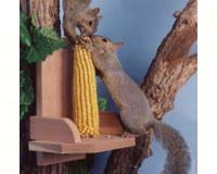 Squirrel Platform feeder SEWF2040