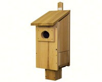 Wood Duck House-SP5H
