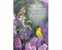 Garden Gold Wedding-TFG14323