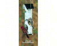 Birch Log Mixed Seed-VCLOG2M