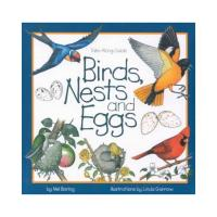 Birds Nests and Eggs-WFP1559716246