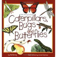 Caterpillars Bugs and Butterflies-WFP1559716741