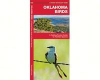 Oklahoma Birds by James Kavanagh-WFP1583550083