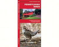 Pennsylvania Birds by James Kavanagh-WFP1583550090