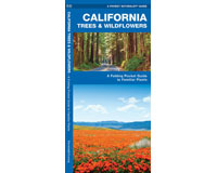 California Trees and Wildflowers by James Kavanagh-WFP1583550717