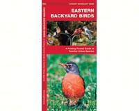 Eastern Backyard Birds by James Kavanagh-WFP1583550748