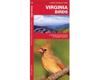 Virginia Birds by James Kavanagh-WFP1583550991