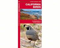 California Birds by James Kavanagh-WFP1583551011