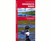 Minnesota Birds by James Kavanagh-WFP1583551035