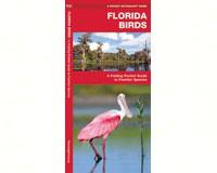 Florida Birds  by James Kavanagh-WFP1583551059