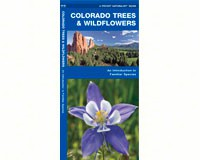 Colorado Trees and Wildflowers Field Guide by James Kavanagh-WFP1583551080