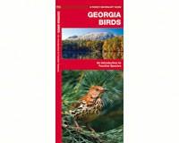 Georgia Birds by James Kavanagh-WFP1583551103